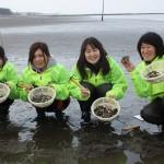 富津海岸潮干狩り場は3月8日オープン/アサリの生育は上々♪