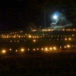 含富里(がんぶり)絆の会「竹灯篭の夕べ」の幻想的な写真(富津市鶴岡)